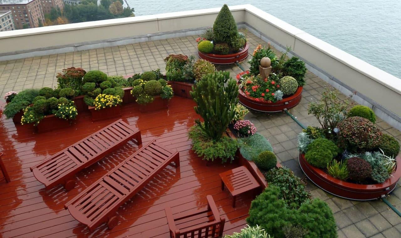 مشاوره ی کاشت گیاهان در پشت بام