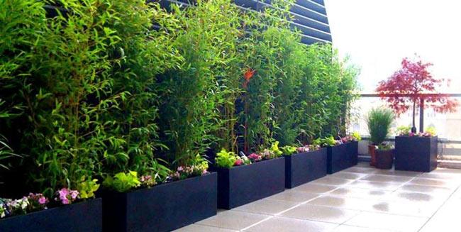 راهنمایی طراحی فضایی گرم و خصوصی در پشت بام