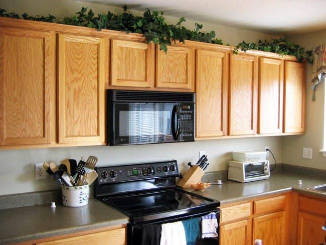 استفاده از گیاهان طبیعی رونده و یا مصنوعی در آشپزخانه