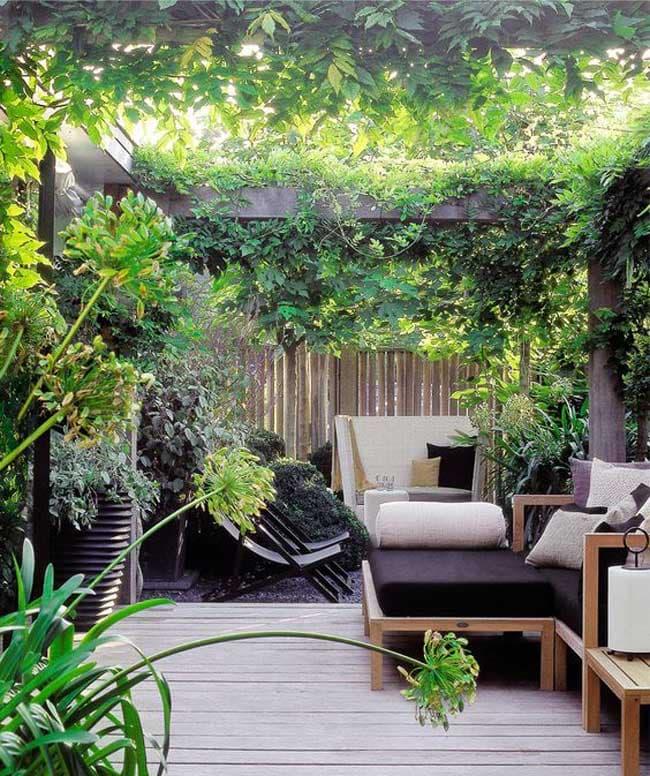 مشاوره چگونگی انتخاب گیاه برای پشت بام و بالکن